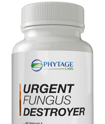 Urgent Fungus Destroyer eradicates the fungus from the root and prevents it from developing in the future