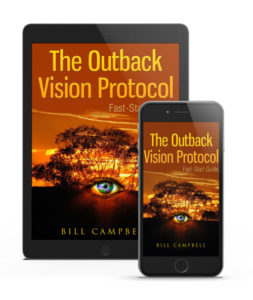 Outback Vision Protocol encompasses recipes and smoothies that enhance the eyesight and prevent any future disorder